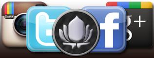 Lotus is Social